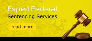 expert-federal